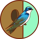 Swallow Girl Scout badge by Sierra Morrow